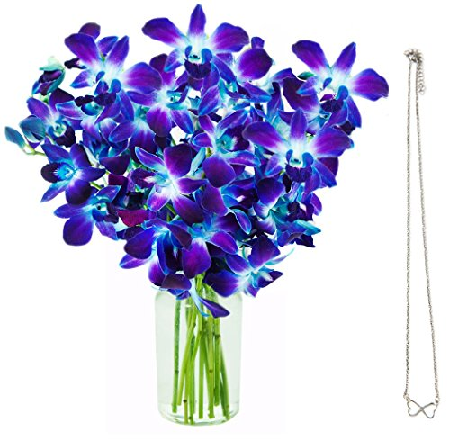 KaBloom Exotic Blue Sapphire Orchids & Infinity Hearts Necklace: 10 Fresh Blue Dendrobium Orchids with Vase and an Infinity Hearts Necklace by KaBloom