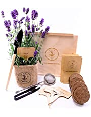 Thee kruidentuin kweekset 4 soorten planten zaden tuin starterset, eco-zaad met houten kist met deksel, mini-broeikas, kinderkeukenaccessoires, kinderkweekset van PUT DOWN ROOTS