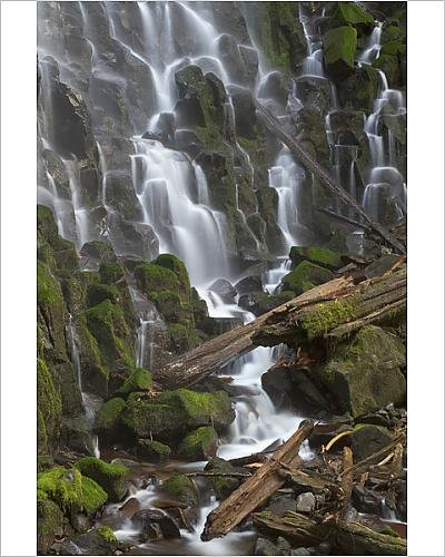 Photographic Print of Ramona Falls in Clackamas county, Oregon
