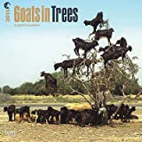 Goats in Trees - 2014 Calendar