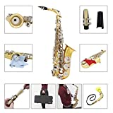 LADE WSS-865 Brass Alto Saxophone Silver Button with Accessories