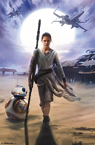 Star Wars The Force Awakens - Rey Poster 22 x 34in