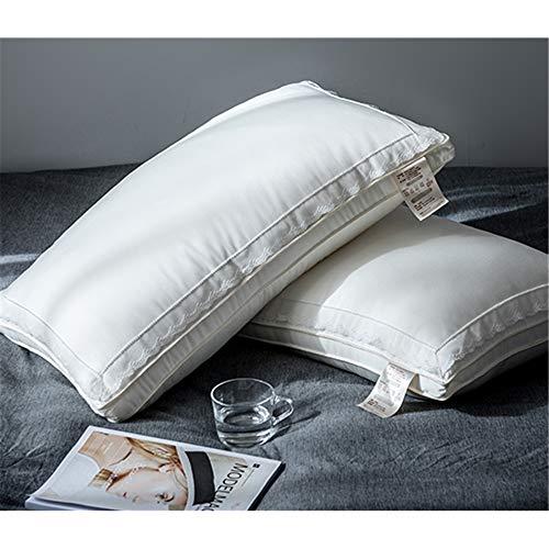 Memory Pillow Silk Skin Care Silk Pillow Protecting Cervical Adult Pillow,C