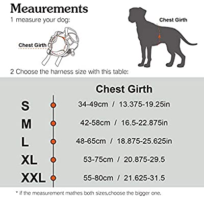 ThinkPet No Pull Harness Breathable Sport Harness - Reflective Padded Dog Safety Vest Adjustable Harness, Back/Front Clip for Easy Control