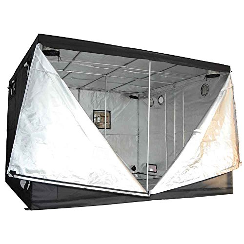 516dWDDkbDL 120x120x78in/10x10x6.5ft Xlarge Non-toxic 600D Mylar Reflective Grow Tent Hydroponic Dark Room Box Hut