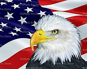 1 4 sheet bald eagle american flag background edible cake