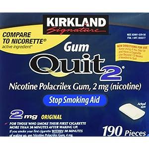Kirkland Signature Quit Smoking Gum
