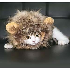 Record Traje de gato de peluca-auricular-leuone