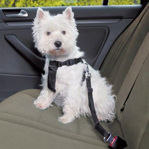 para pie y los Viajes en Coche 2864 ISO TRADE Correa para Perros con Longitud Ajustable Cintur/ón de Seguridad del Coche para Mascota