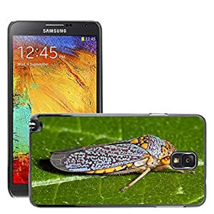 Cas Coq Case Cover // M00146650 Bug Cigarra Insectos // Samsung Galaxy Note 3 III N9000 N9002 N9005
