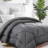 Hypoallergenic Comforter Duvet Insert Reversible All Season, Twin, Grey Deal