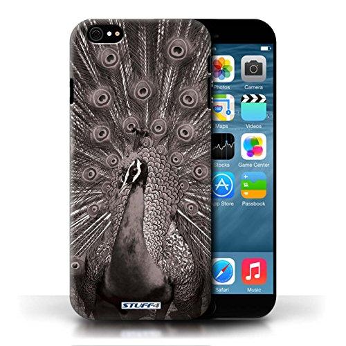 Kobalt® protector duro de nuevo caso / cubierta para el Apple iPhone 6/6S | Pavo real Diseño | Animales de zoológico mono colección