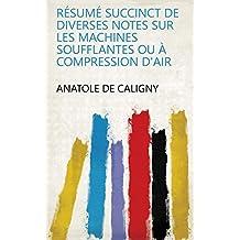 Résumé succinct de diverses notes sur les machines soufflantes ou à compression d'air (French Edition)