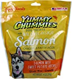 Yummy Chummies Dog Biscuits Treats Real Alaskan Seafood 100% Grain Free, Crunchy, Exclusive From Alaska Made in USA Omega 3 Fatty Acids, Salmon with Sweet Potato Recipe 14oz