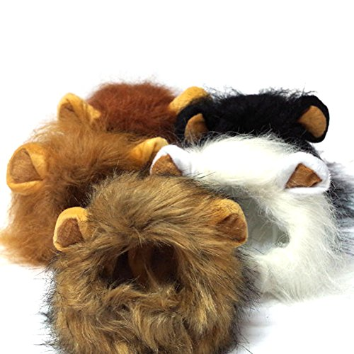 LOOYUAN Pet Costume Lion Mane Wig for Dog Cat Halloween Dress up with Ears (White) -