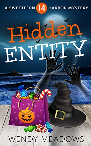 Hidden Entity (Sweetfern Harbor Mystery Book 14) by [Meadows, Wendy]