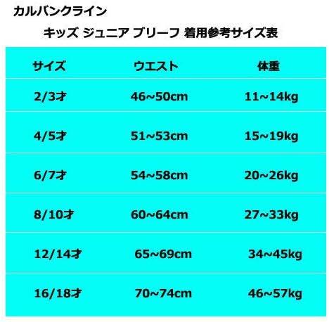 CalvinKlein カルバンクライン 子供用下着 キッズ ボーイズ ボクサーパンツ ブリーフ 2枚セット 4/5(4/5才)=51~53cm 体重15-19kg デザインB