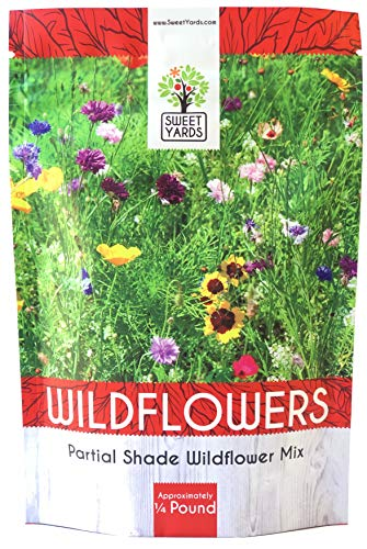 Bulk Wildflower Seeds Partial Shade Mix - 1/4 Pound Bag Over 30,000 Open Pollinated Annual and Perennial Seeds