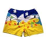 Boy's Swimwear Sport Shorts Beach Shorts Swim Trunks Dinosaur,Yellow