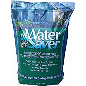 WaterSaver Grass Seed Seed Mixture With Turf-Type Tall Fescue - Used to Seed New Lawn and Patch Up Jobs - Grows in Sun or Shade - 10 lbs - Covers 1/20 Acre