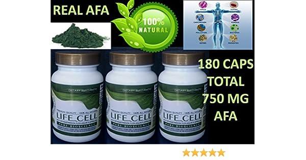 Amazon.com: 3 CEL Celulas Madres Biomatrix Bioxcell Madre Cell Plus AFA Bioxtron Health Stem Like Bioxcell Celulas Madre Life Cell 60 Caps 550mg Stem ...