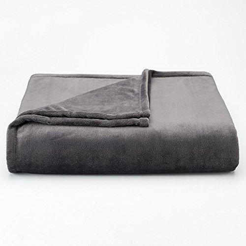 (The Big One Oversized Plush Throw (Gray Solid) - 5ft x 6ft Super Soft and Cozy Micro-Fleece Blanket for Couch or Bedroom)