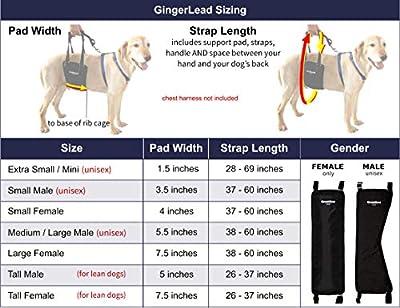 GingerLead Pet Support & Rehabilitation Harnesses