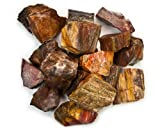 Hypnotic Gems Materials: 1 lb Bulk Rough Petrified Wood Stones from Madagascar - Raw Natural Crystals for Cabbing, Cutting, Lapidary, Tumbling, Polishing, Wire Wrapping, Wicca & Reiki Crystal Healing