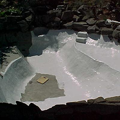 Pond Armor SKU-WHITE-QT-R Non-Toxic Pond Shield Epoxy Paint, 1.5-Quart, White : Swimming Pool Paint : Garden & Outdoor