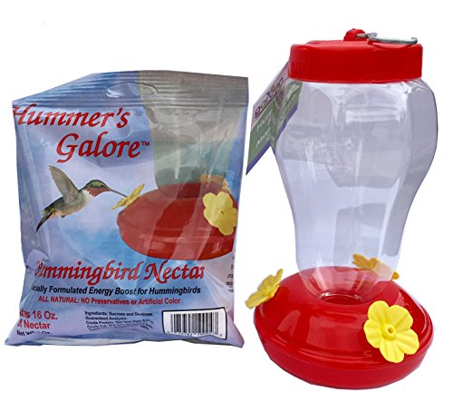 Garden Collection Simple Hummingbird Feeder with Hook and Hummingbird Nectar, Red with Yellow Flowers