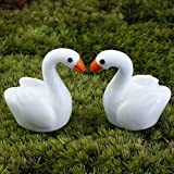 "New ""No.30 5Pcs White Swan"" Lots Garden Craft Plant Pots Fairy Ornament Miniature Figurine Dollhouse Decor Set43"