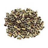 uxcell® 150 Pcs 5/16-18 Bronze Tone Thread Rivet Nut Insert Nutserts for Vehicle