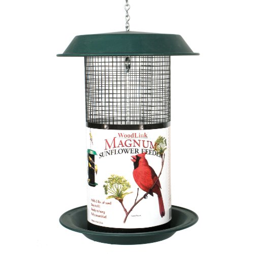 Top 10 Best Wire Bird Feeder