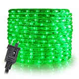 WYZworks 50' feet Green LED Rope Lights - Flexible 2 Wire Accent Holiday Christmas Party Decoration Lighting | UL Certified