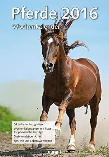Wochenkalender - Pferde 2016