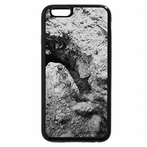 iPhone 6S Plus Case, iPhone 6 Plus Case (Black & White) - Ants