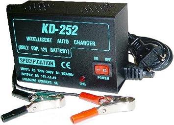 Cablematic - Cargador Batería 12V (5A): Amazon.es: Electrónica