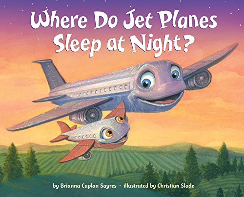 Where Do Jet Planes Sleep at Night? (Couches With Storage)