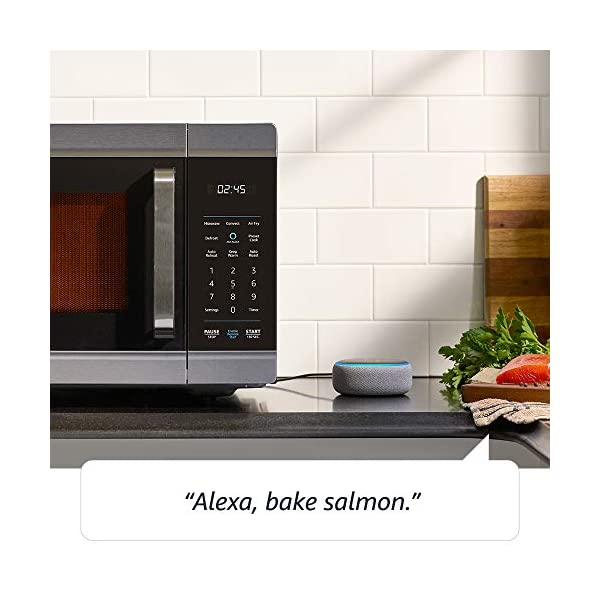 Amazon Smart Oven, a Certified for Humans device – plus Echo Dot 3