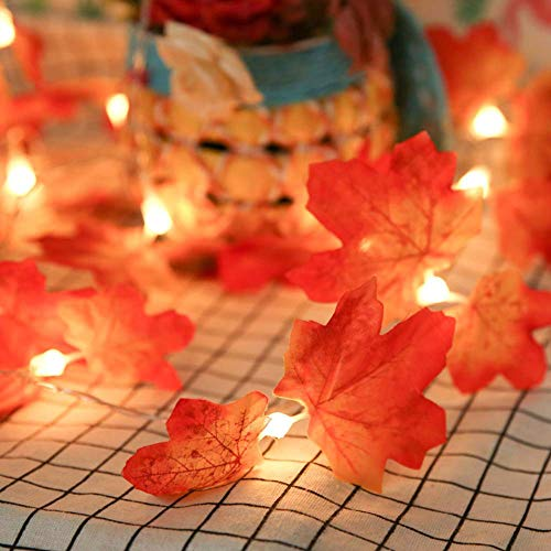TOPCHANCES 9.8ft 20LED Maple Leaf String Lights Waterproof Fall Autumn Lighted Garland Battery Powered for Halloween Christmas Harvest Decorations(Pattern -