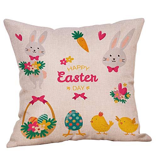 Weiliru Creative ❤ Pillow Protectors ❤100% Cotton Sateen Pillowcase for Hair and Skin with Hidden Zipper,18×18Inch