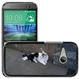 Hot Style Cell Phone PC Hard Case Cover // M00116931 Cat Young Smooch Mother Kitten // HTC One Mini 2 / M8 MINI / (Not Fits M8)