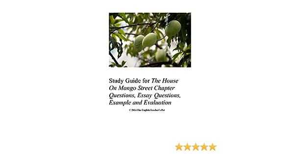 house on mango street essay questions