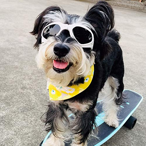 Homesupplier Dog Goggles Doggie Sunglasses for Small Medium Pets Dogs Glasses Puppy Eyewear Windproof UV Protection, Vet Recommended Eye Protection ()