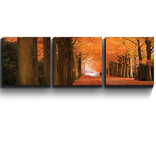 3 Square Panels Contemporary Art Autumn orange leaved trees line path Three Gallery ped Printed Piece x3 Panels