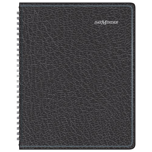 At-A-Glance G-400 DayMinder Monthly Planner