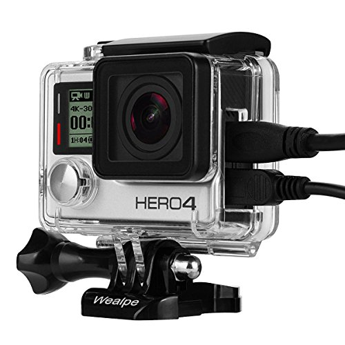 Best Micro 4/3 Camera For Underwater Photography - 1