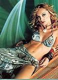 Inna Zobova 18X24 Gloss Poster #SRWG7703