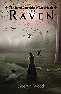 The Raven by Aderyn Wood ebook deal