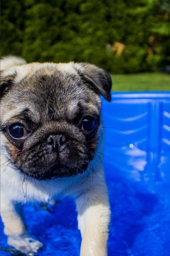 Sweet Fawn Colored Pug in a Wading Pool Puppy Dog Journal: Lined Notebook/Diary